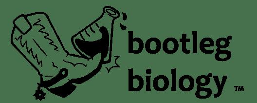 cropped-bootleg_biology_logo_vector-e1579472930538